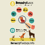Benadryl dosage for dogs infographic