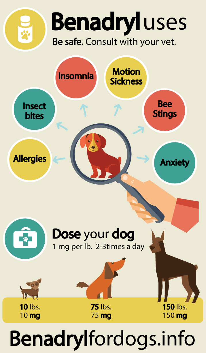 What S The Dosage Of Benadryl For A Dog