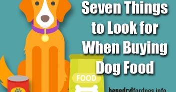 Benefits Of Making Your Own Dog Food