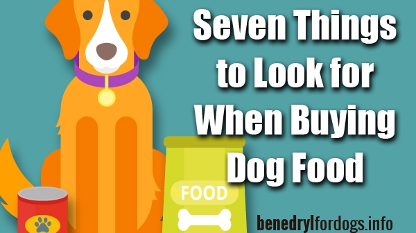 Good Place Buy Essay Benadryl For Dog How Much