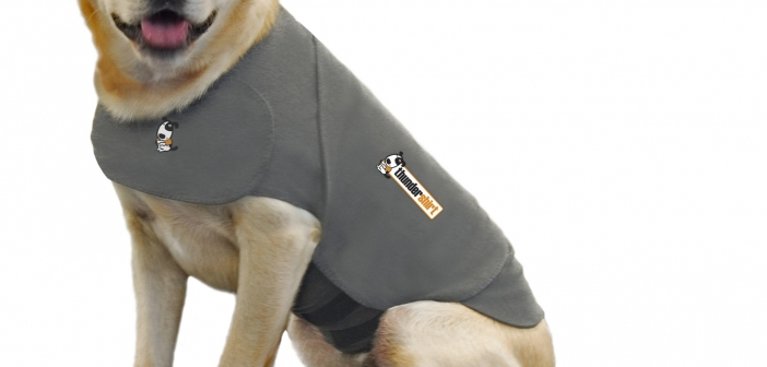 thundershirt-stress-relief-for-dogs